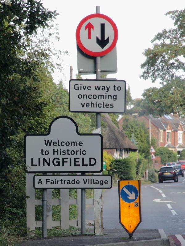024_Lingfield